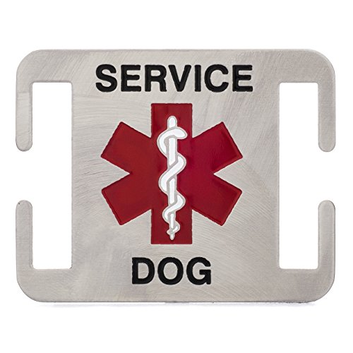Leash Boss Service Dog ID Tag - Fits Directly on Dog Collar or Harness - Quiet and Silent Stainless Steel K9 Service ID Tag (1 in) ()