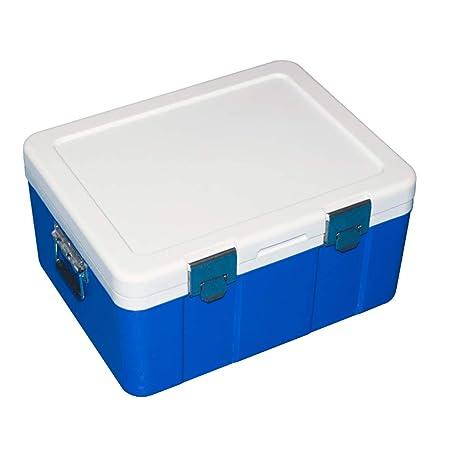 LHAO Mini Nevera 20L Enfriador eléctrico de Caja para Bebidas ...