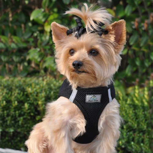 Image of DOGGIE DESIGN CHOKE FREE REFLECTIVE STEP IN ULTRA HARNESS - BLACK AMERICAN RIVER (XXL)