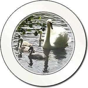Cisnes y pollos del cisne del bebé Impuesto de matriculación disco regalo permis
