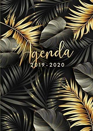 Agenda 2019 2020: Agenda 2019/20 Semana Vista, Organiza tu día - Agenda semanal 18 meses - Julio 2019 a Diciembre 2020 - Hojas de palma tropical - ...