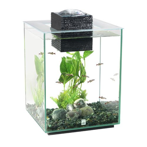 Spiffy pet products betta fish tank setup ideas that make for Tetra pond filter setup