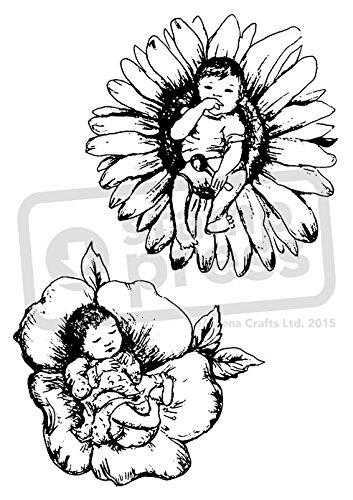 Amazon Com Azeeda A6 Flower Babies Unmounted Rubber Stamp