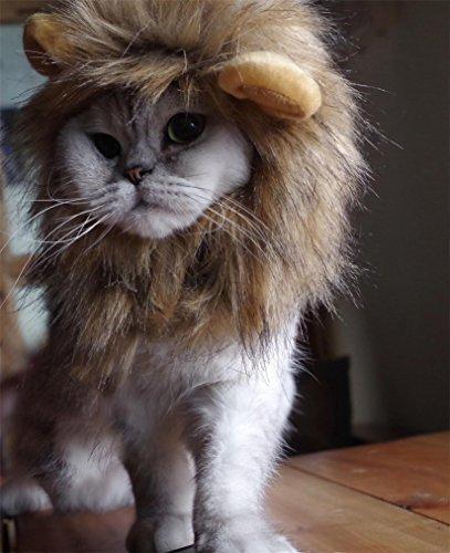 oxe Lion Mane Wig for Cat (Pet Cat Lion Costume)