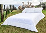 Cheap Comforter Sets Under 50 Pacific Alpacas Duvet Insert – Queen Size 88 X 90 Inch – Luxurious New Zealand Made White Inner with Incredible Alpaca Fibre Fill – Superior Warmth Light Weight for Summer or Winter -  Hypoallergenic