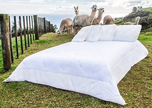 Price comparison product image Pacific Alpacas Duvet Insert – Queen Size 88 X 90 Inch – Luxurious New Zealand Made White Inner with Incredible Alpaca Fibre Fill – Superior Warmth Light Weight for Summer or Winter -  Hypoallergenic