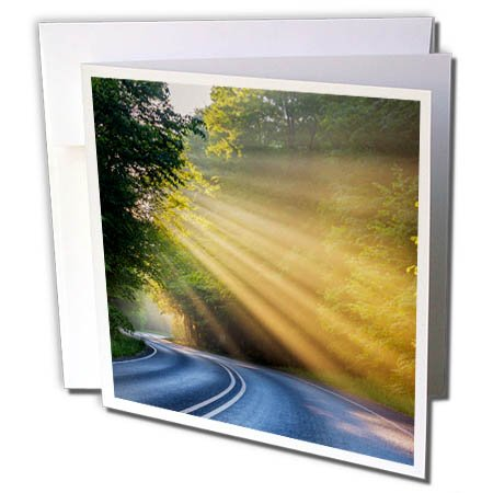 3Drose Danita Delimont   Roads   Fog Rays Over Pierre Stocking Drive Near Empire  Michigan  Usa   6 Greeting Cards With Envelopes  Gc 259512 1