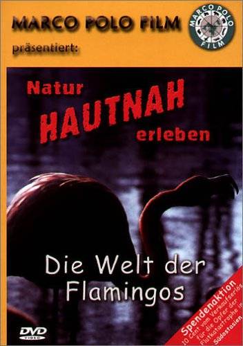 Die Welt der Flamingos [Alemania] [DVD]: Amazon.es: Flamingos ...