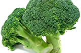 Green Magic Broccoli 500 Seeds Upc 646263361818 + 1 Free Plant Marker