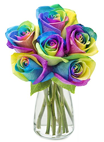 KaBloom Bouquet of Fresh Cut Rainbow Roses: 6 Rainbow-Swirl Roses (Long Stemmed) with Vase