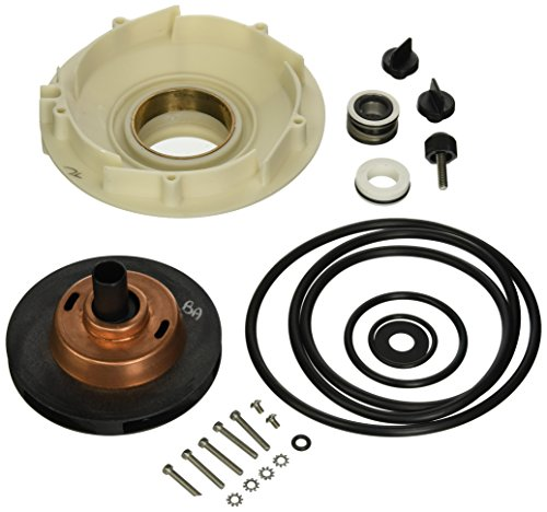Pentair PP4013 Seal/Gasket Kit - Includes shaft seal, gaskets and O-rings, P4E,P4R, P4EA, P4RA 2.0hp AND 2.5hp Dura-Glas II and Max-E-Glas II Pumps