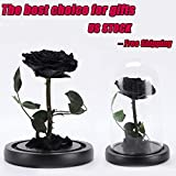 Artificial Flowers, Beauty And The Beast Rose, Preserved Fresh Flower with Fallen Petals in a Glass Best Gift for Valentine's Day Anniversary Birthday Mother's Day Wedding, US STOCK (Black)
