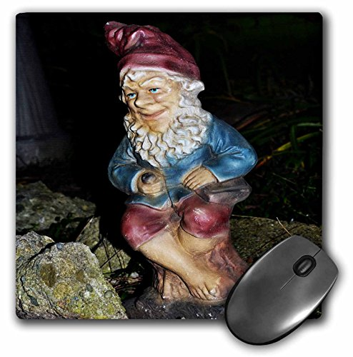Vintage Garden 1 (3dRose LLC 8 x 8 x 0.25 Inches Mouse Pad, An Vintage Garden Gnome (mp_165316_1))