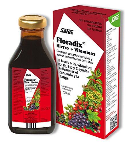 [Floradix Iron & Vitamin Formula Liquid 250ml] (Herbal Iron)