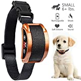 Paipaitek [UPGRADED 2018] No Bark Collar - Best Rechargeable Anti-Barking Shock Control with 5 Levels Automatic Bark Collar for Small Medium Large Dogs Electronic Safe Stop Bark (6+lbs) (brown)
