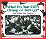 img - for What Do You Call a Group Of - Turkeys? And Other Bird Groups book / textbook / text book