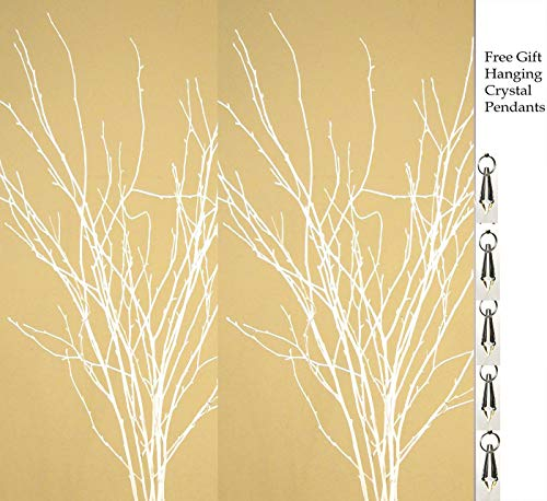 GreenFloralCrafts Birch Branches (Pack of 12 Stems), 3-4', Snowy White ()