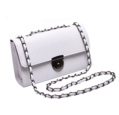 Tonwhar Lady's Small Fashion Handbag Chain Shoulder Crossbody Summer Purse (White)
