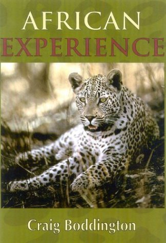 African Experience: A Guide to Modern - African Experience
