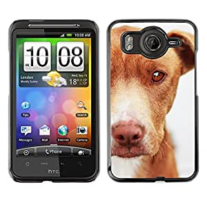VORTEX ACCESSORY Hard Protective Case Skin Cover - mutt mongrel dog brown canine - HTC Desire HD Inspire 4G G10