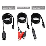 Cateck 12V / 24V Extension Cord with Cigarette Lighter Plug and Battery Clip-on Car Cigarette Lighter Socket Adapter [12 Feet Extension Cord- 6 feet Per Cord- Max 14A output SAE]