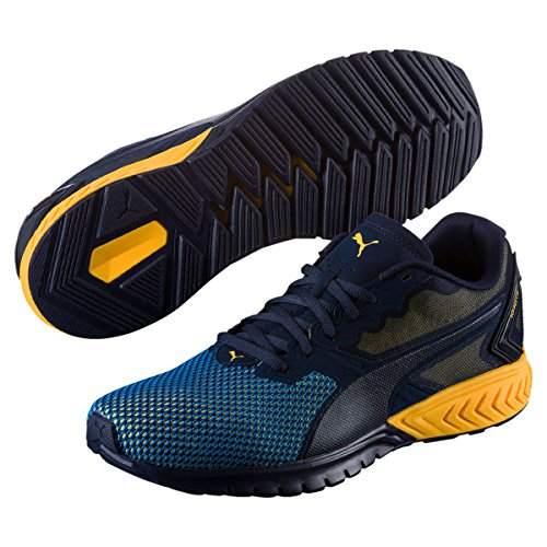 PUMA Men's Ignite Dual Breathe Cross Trainer Shoe