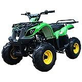 ATA-125D TaoTao Kids Gas 125cc Utility ATV - White Camo
