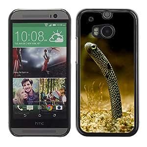Carcasa Funda Case //Eel V0000248// HTC ONE M8