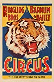 vintage advertisement - USA - Ringling Bros and Barnum and Bailey Circus (tiger head) - Vintage Advertisement (24x36 Giclee Gallery Print, Wall Decor Travel Poster)
