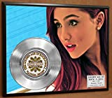 Ariana Grande Limited Edition Platinum Record Poster Art Music Memorabilia Display