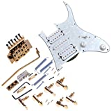 1set Gold Floyd Rose Style Double Tremolo System Loaded Pickguard for Ibanez