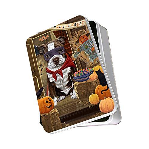 Enter at Own Risk Trick or Treat Halloween Boston Terrier Dog Photo Storage Tin PITN53035