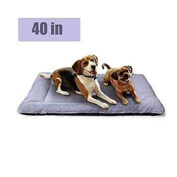 Amazon.com: Cama para perros PETSGO, camas para perros y ...