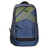 Fastrack 24.78 Ltrs Blue Casual Backpack (A0637NBL01)