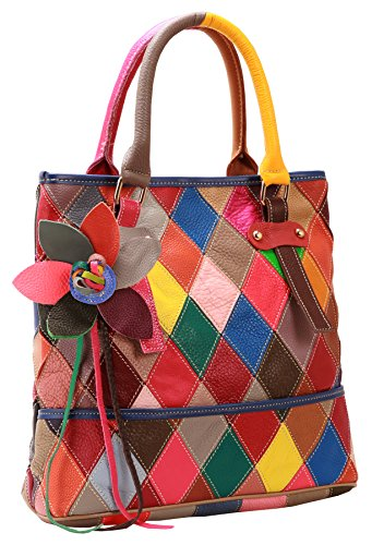 Heshe Women's Multi-color Shoulder Bag Hobo Tote Handbag Cross Body Purse (Multi Color Purse Handbag)