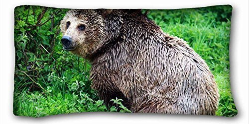 """Price comparison product image Decorative King Pillow Case Animals brown bear ZELENAYA.TRAVA nature greens 20""""*36"""" One Side"""