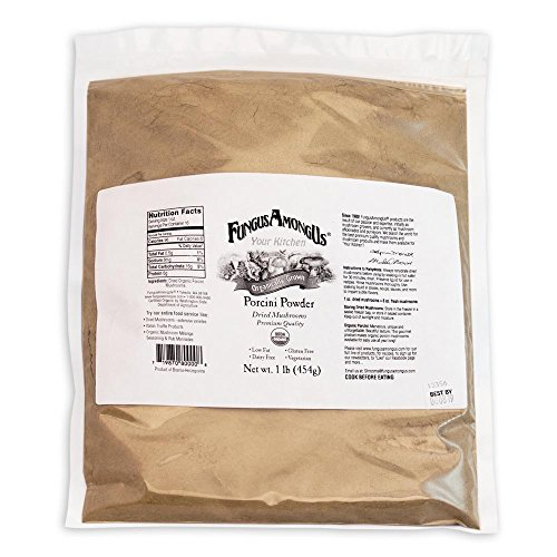 Bulk Dried Organic Porcini Mushroom Powder - 1 lb - by FungusAmongUs