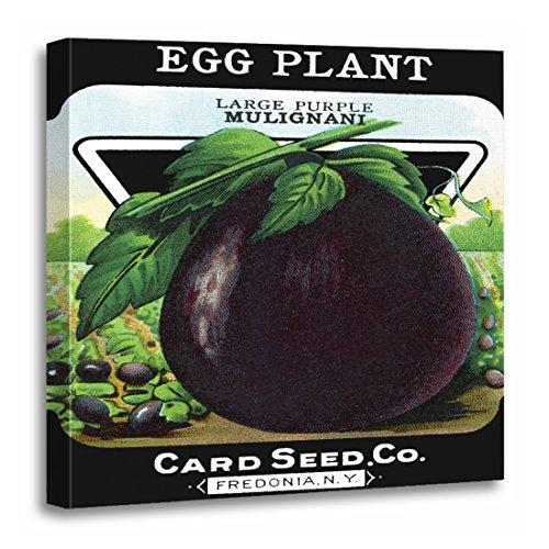 TORASS Canvas Wall Art Print Vintage Eggplant Seed Label Garden Vegetable Moffa Farmers Artwork for Home Decor 20