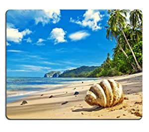 Single Sea Shell Tropical Beach Mouse Pads Customized Made to Order Support Ready 9 7/8 Inch (250mm) X 7 7/8 Inch (200mm) X 1/16 Inch (2mm) High Quality Eco Friendly Cloth with Neoprene Rubber MSD Mouse Pad Desktop Mousepad Laptop Mousepads Comfortable Computer Mouse Mat Cute Gaming Mouse pad by runtopwell