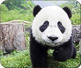 Panda Cute Large Mousepad Mouse Pad