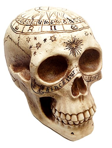 Decorative Skulls (Atlantic Collectibles Solar Astrology Ancient Prophecy Cartography Relic Map Skull Decorative Figurine)