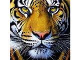 SUNSOUT INC Golden Tiger Face 1000 pc Jigsaw Puzzle