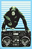 Steez Monkey on a Boombox Decorative Music Urban Graffiti Art Poster Print 24x36