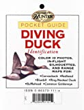 Diving Duck Identification, Creative Publishing International Editors, 0865734828