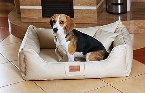 tierlando Articulos ortopedicos Cama para perro Maddox ORTO VISCO en Cuero artificial Sofá para perro Cuna para perro Talla L 100 cm COLOR CREMA: Amazon.es: ...
