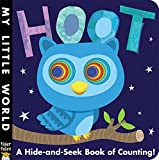 img - for Hoot: A Hide-and-Seek Book of Counting (My Little World) book / textbook / text book