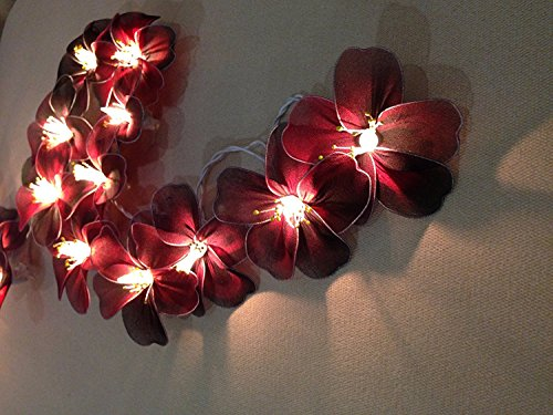 - Hibiscus Flowers 20 Light Bulbs Lighting String Lantern for Velentine, Wedding, Patio, Garden, Garland, Indoor Outdoor Decoration, Christmas Tree Decoration