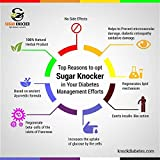 Sugar Knocker Ayurvedic Medicine for Diabetes, 100% Natural Herbal Product Without Side Effect