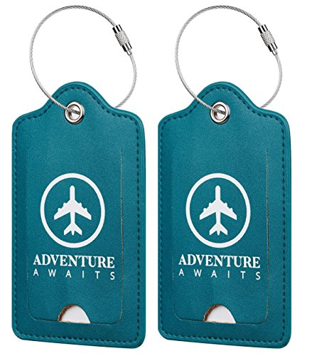 Chelmon Leather Luggage Tags Baggage Bag Instrument Tag 2 Pcs Set (Green Summer 7087)