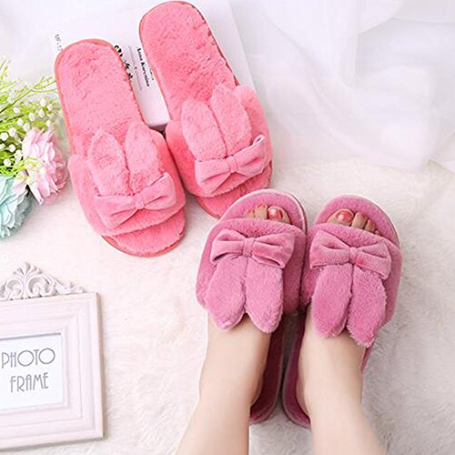 Eastlion Autumn And Winter Home Cute Plush Shoes Cartoon Ladies Floor Slippers Style 2 Wine Red IT9aY